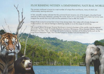 Belum Rainforest Resort - Natural World - Pg 3